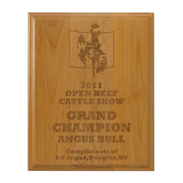 Laser engraved plaque 2.